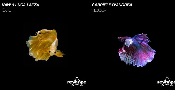 Reshape Records e i suoi nuovi singoli